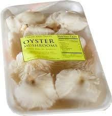 ciuperci oyster)