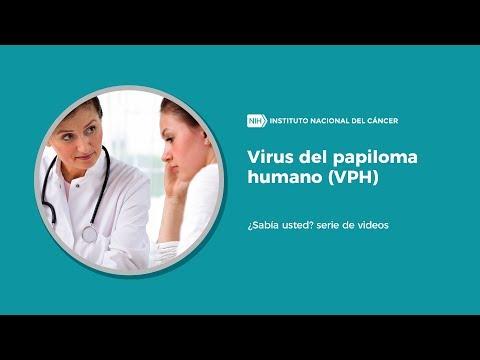 hpv y cancer de mama
