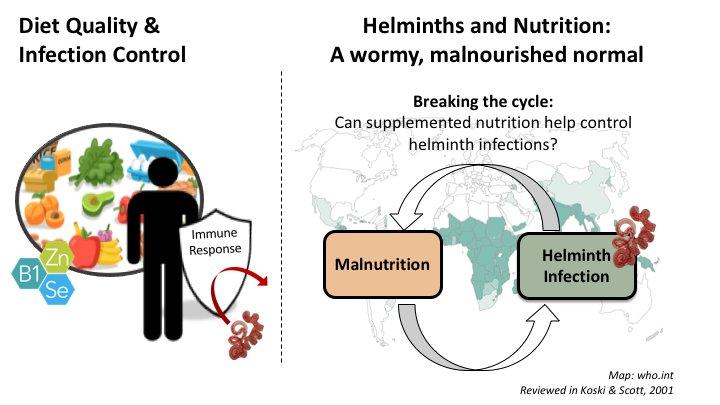 control helmint)