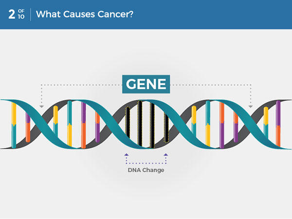 cancer genetic cause)