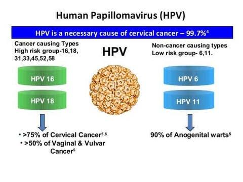 human papillomavirus may cause)