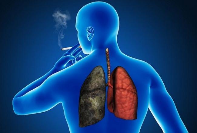simptomele helmintelor din corp la adulți