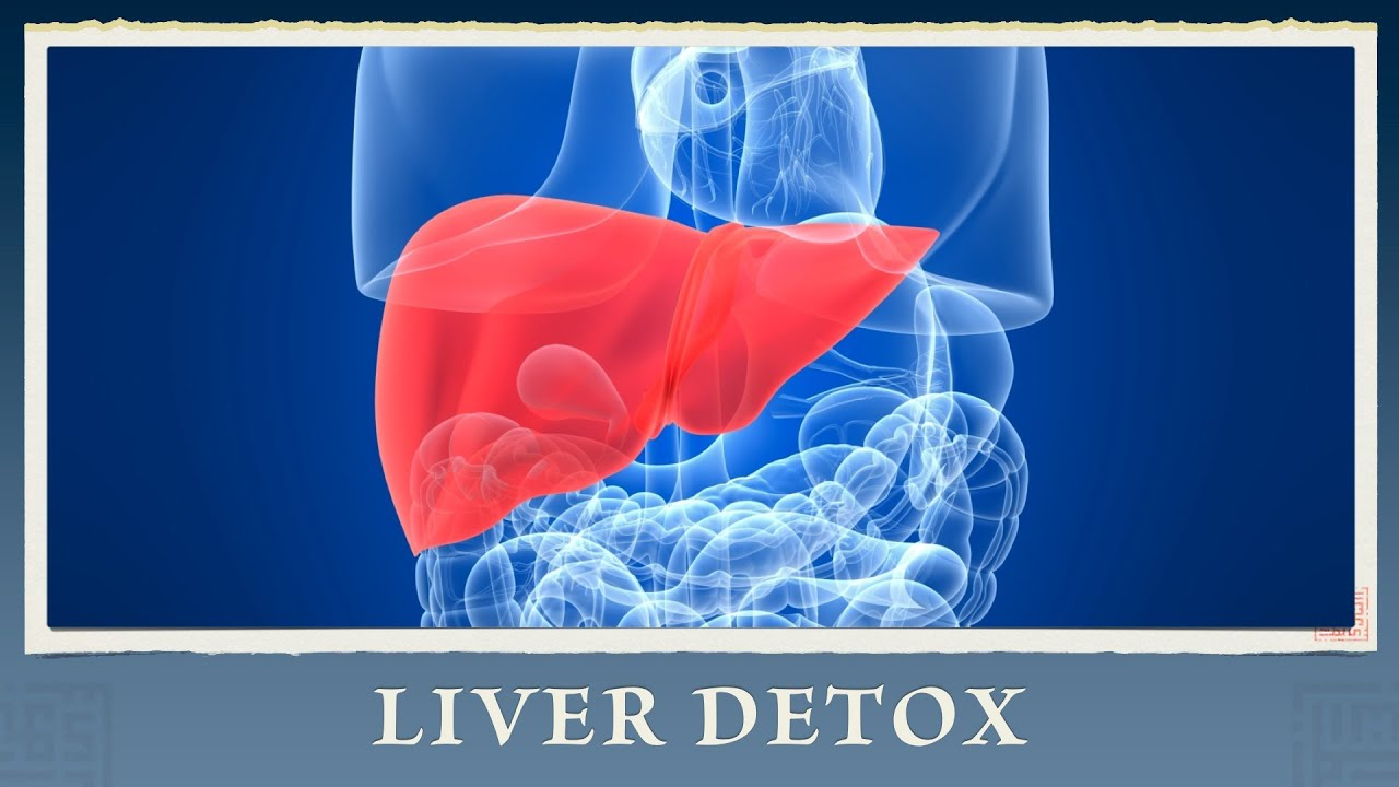 toxiner i levern