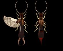 insecte din paraziți)