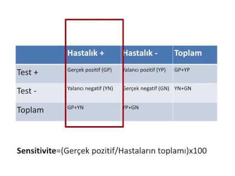 papillomavirus hastal g nedir