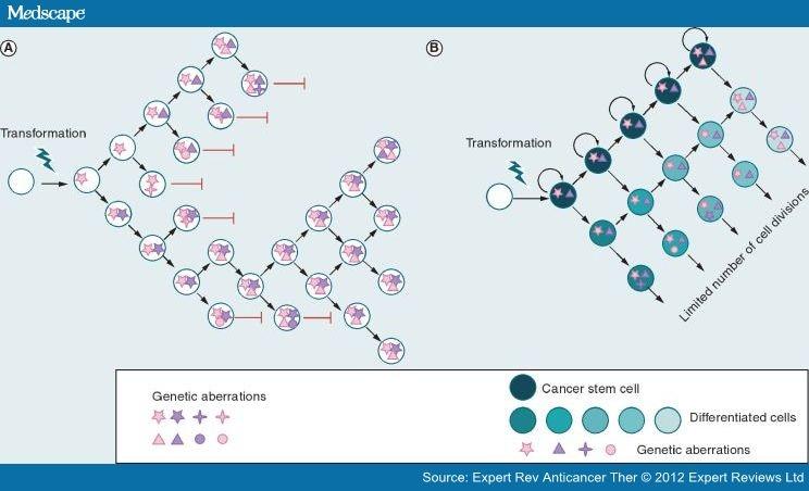cancer intratumor genetic heterogeneity)