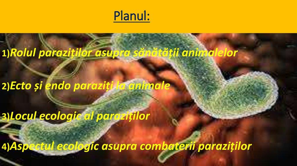 medicina parazitară trei