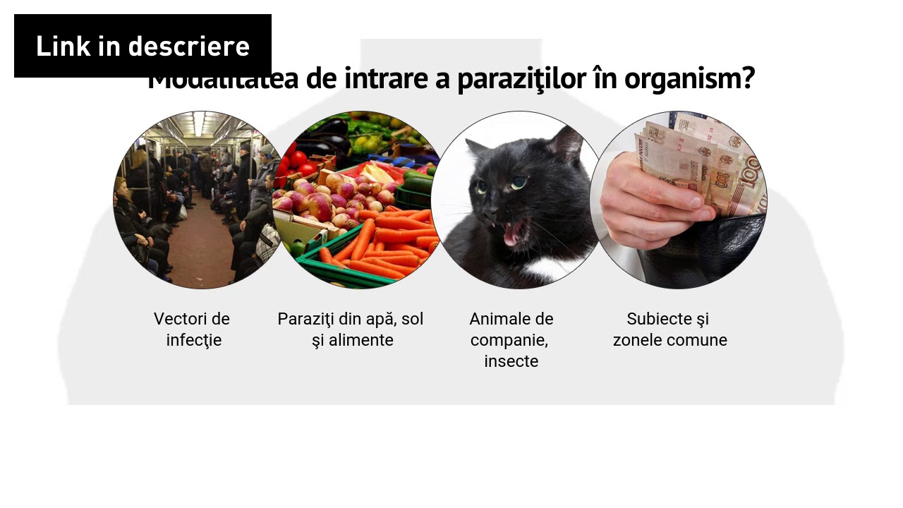 parazitii din organism)