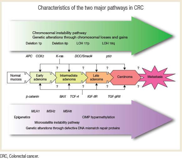 colon cancer genetic disease)