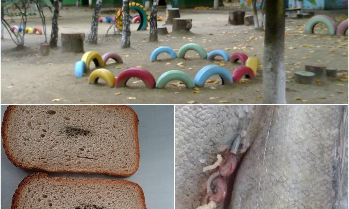 copilul a descoperit viermii încrucișați
