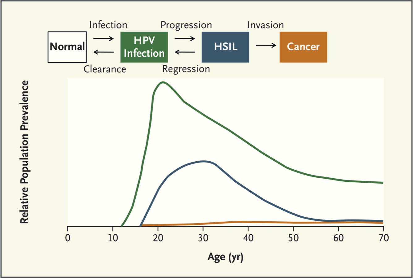 human papillomavirus infection frequency)