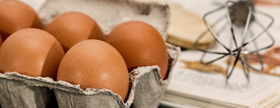 tratament cu lista de ouă fără copii)