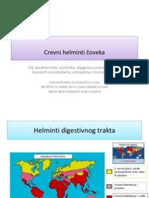 lista bolilor helmintice