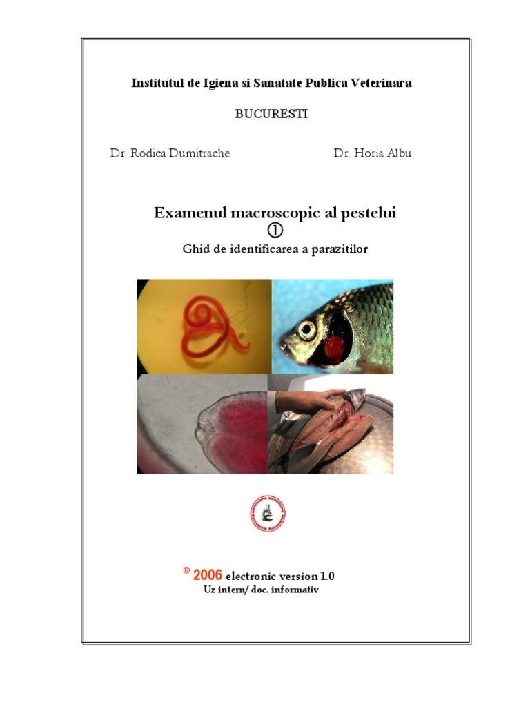 paraziti dactylogyrus în trematode monogenetice)