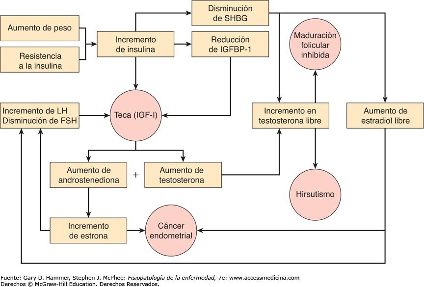Papiloma humano hombres sintomas. Cancer gastric malign