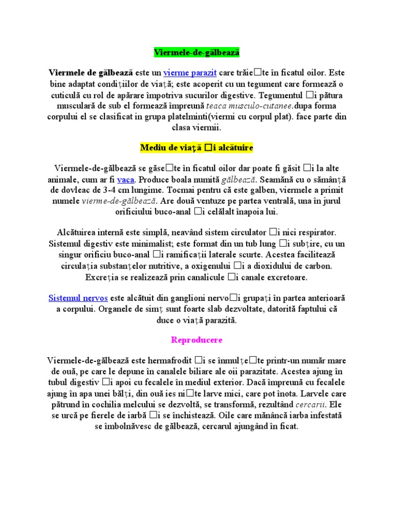Vierme informatic - Wikipedia