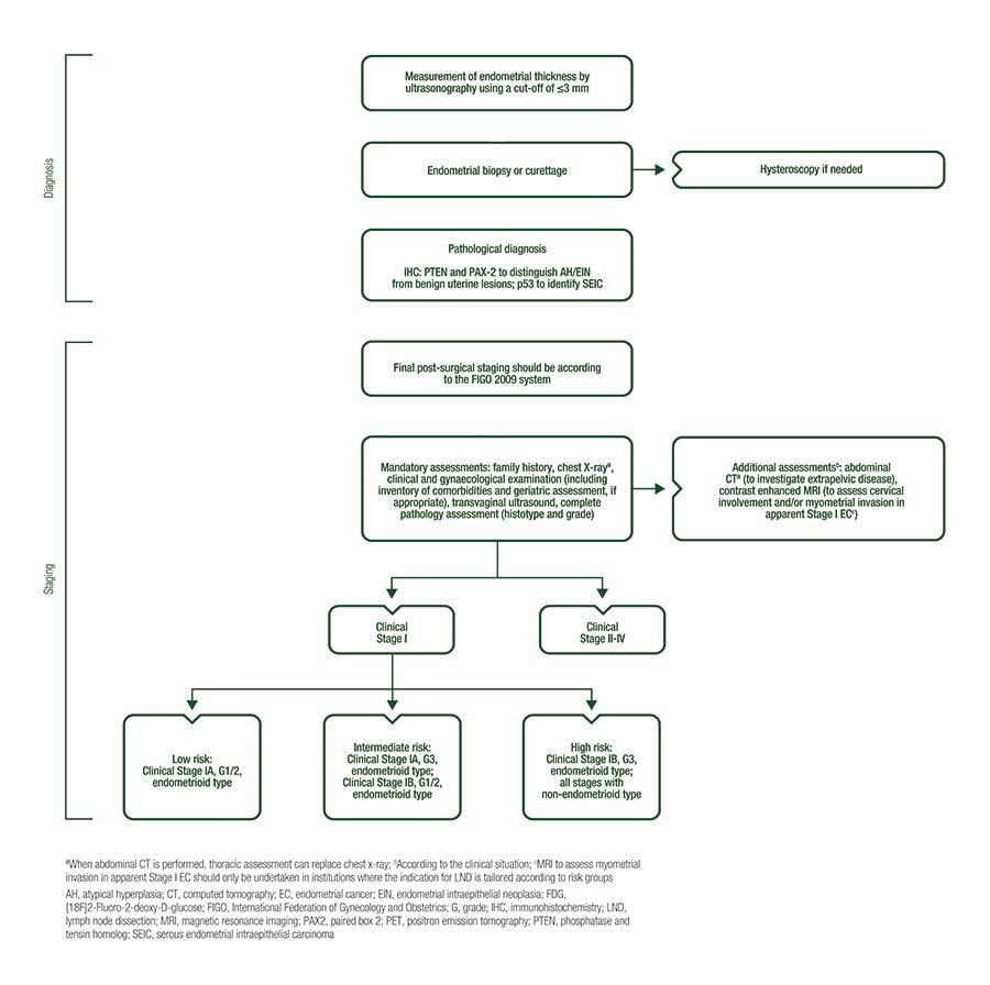 endometrial cancer guidelines nice