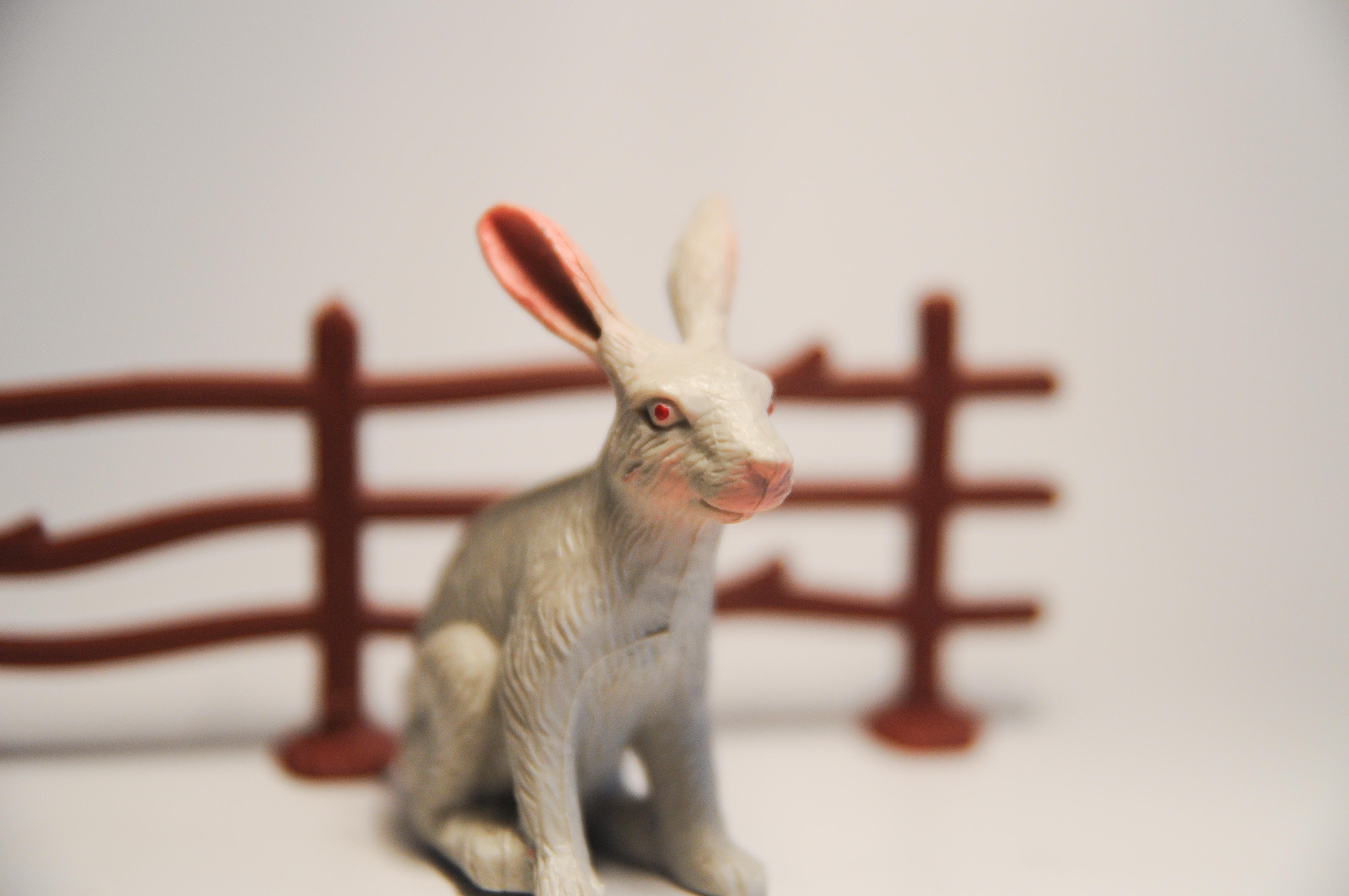 Horoscopul estic la ce să te aștepți la un iepure. Compatibilitate cu maimuță și iepure în dragoste