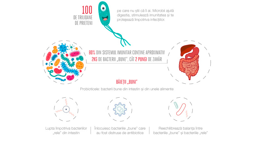 Fa cunostinta cu bacteriile bune din intestin!
