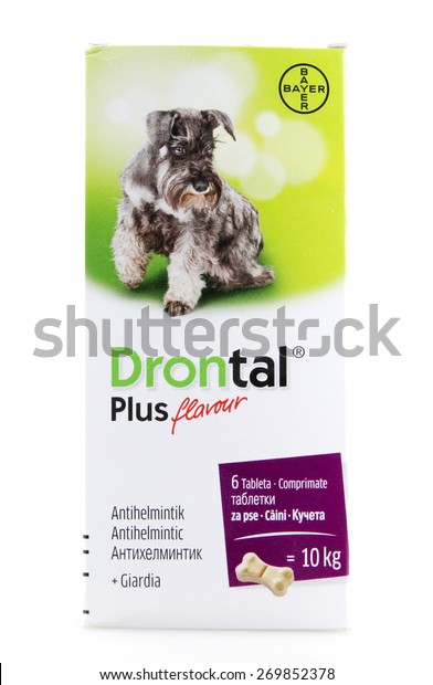 giardia drontal plus)
