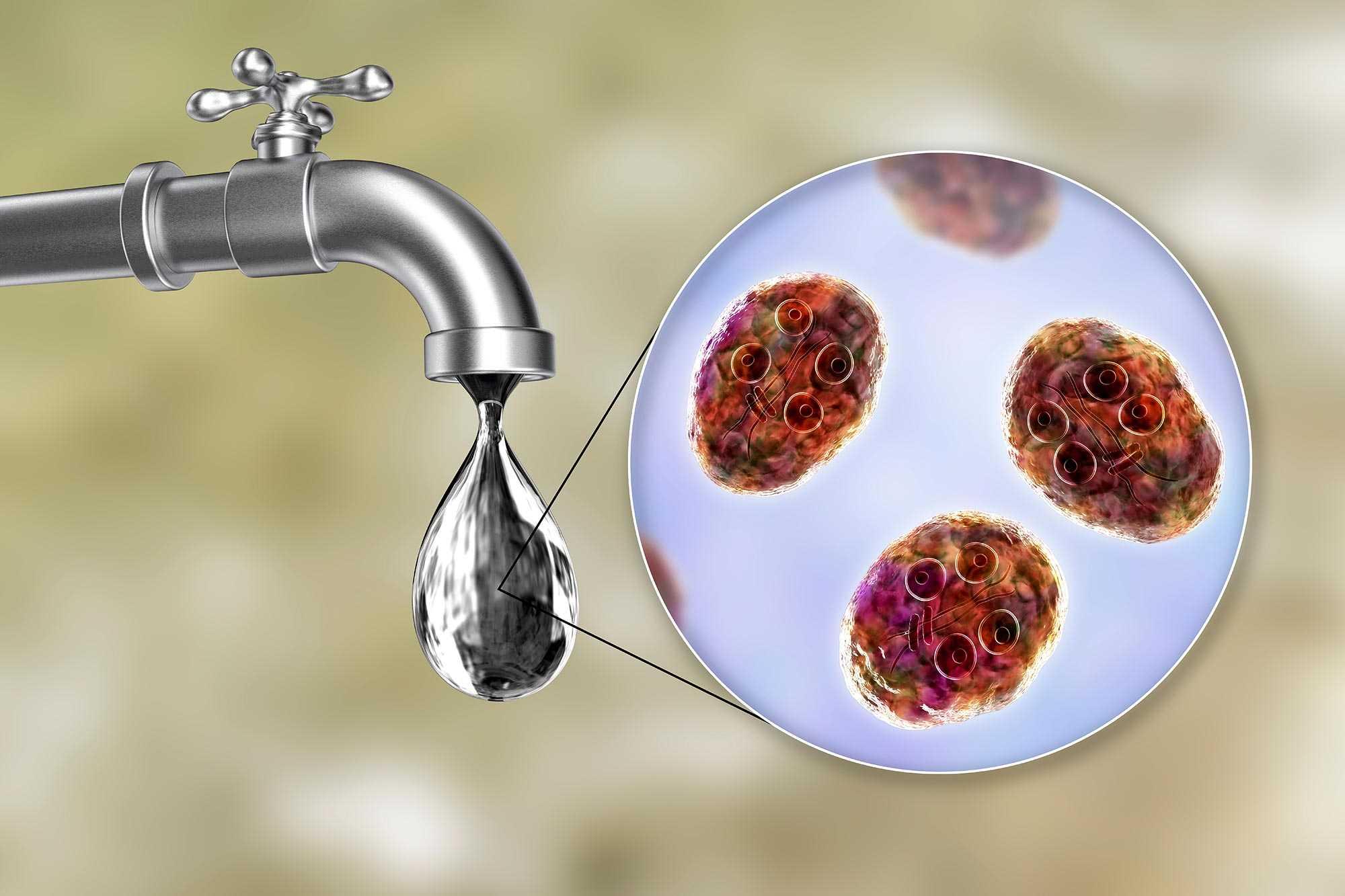 medicamente antiparazitare opinia oamenilor simptome în tratamentul viermilor