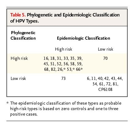 hpv high low risk types)