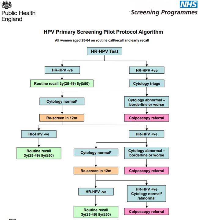 hpv treatment colposcopy)