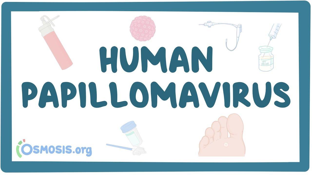human papillomavirus hpv osmosis)