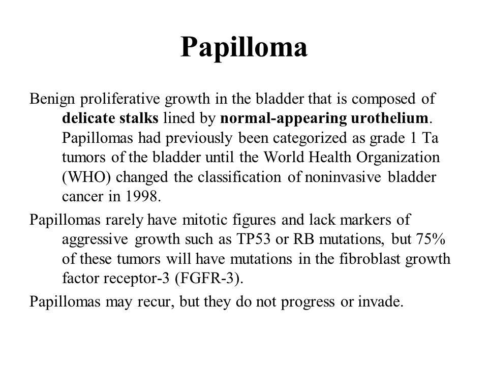 papilloma tumor in bladder