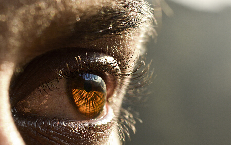 paraziti in ochi)
