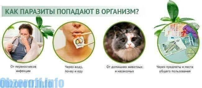 un instrument pentru îndepărtarea paraziților din organism)