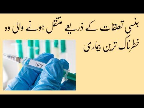 hpv means in urdu)