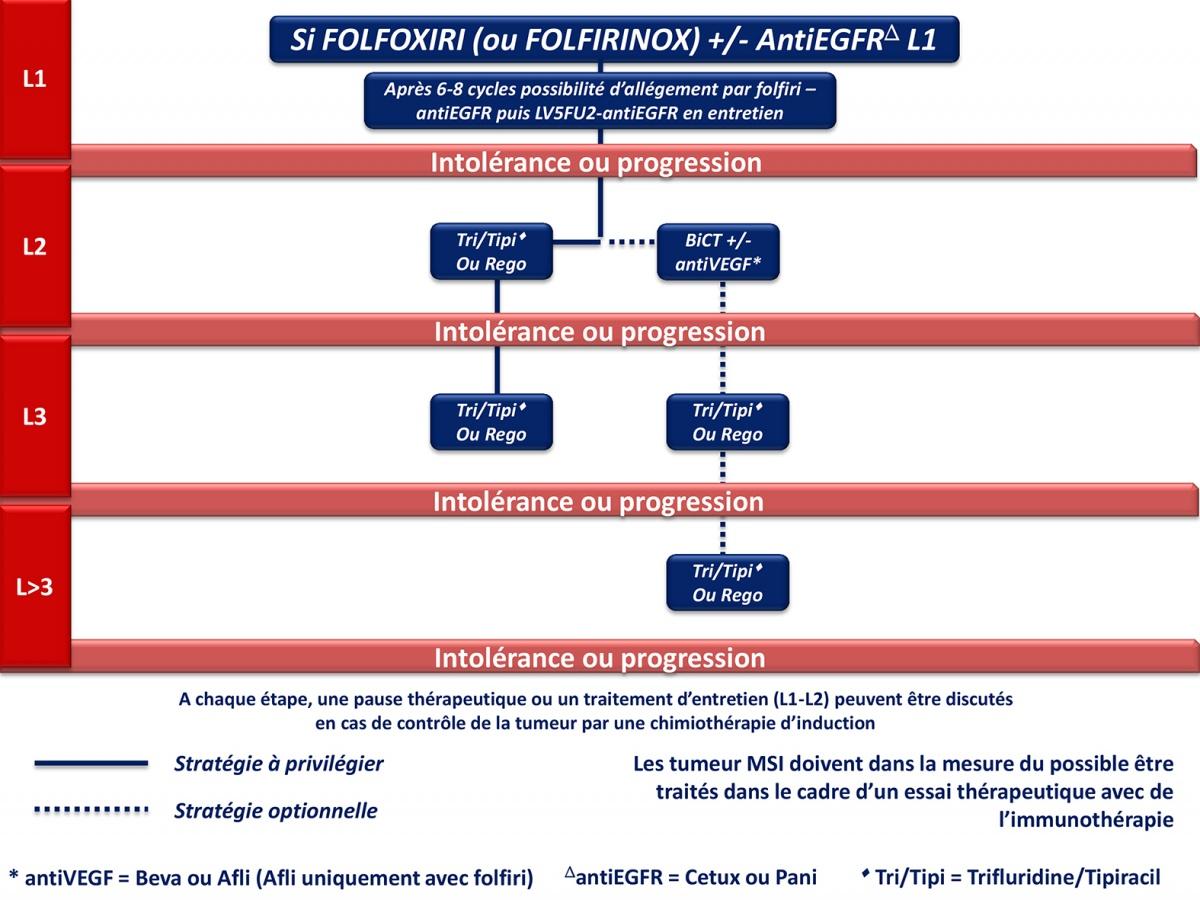 Urothelial papilloma histopathology - REVIEW-URI