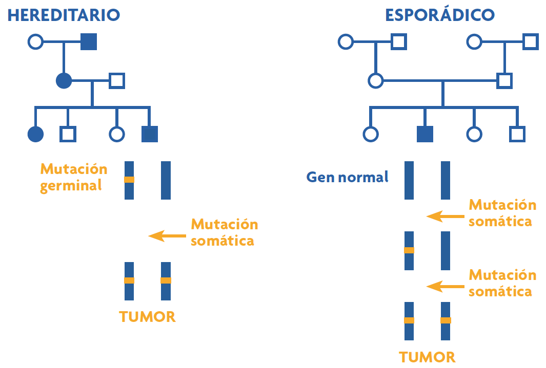 Que es cancer familiar