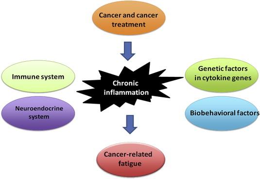 neuroendocrine cancer fatigue)