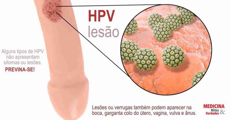 hpv genital transmissao)