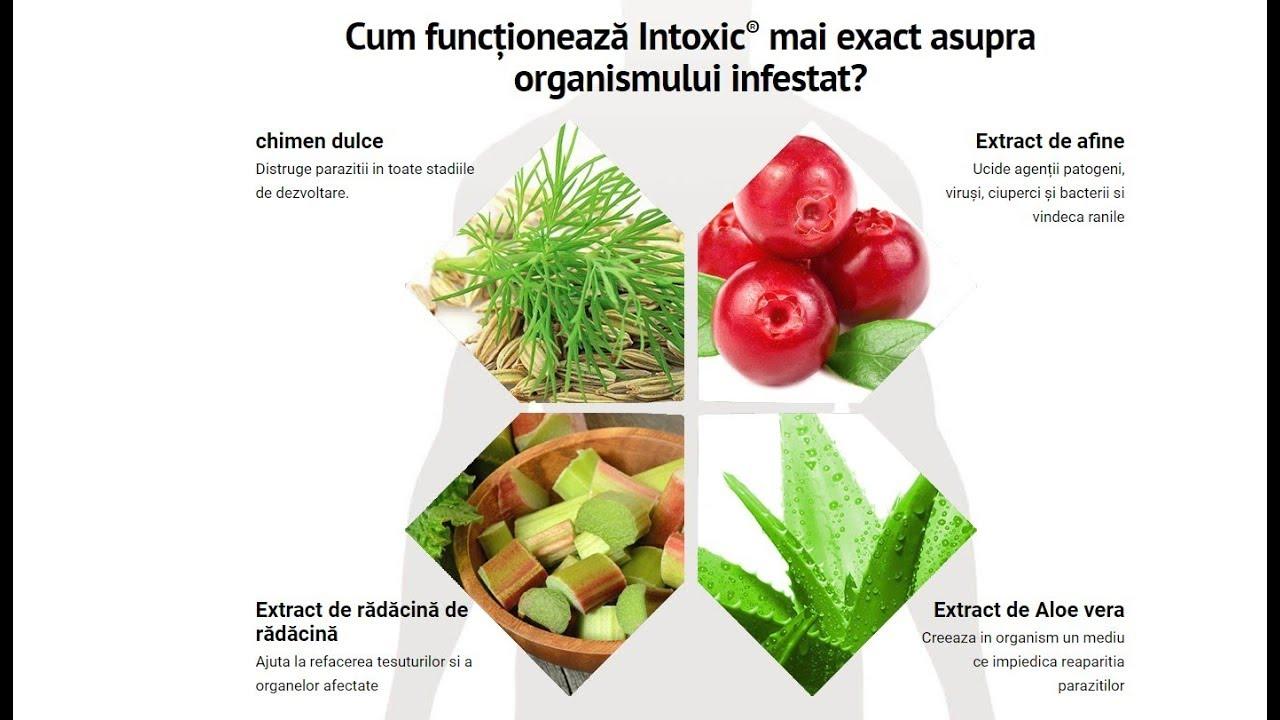 Eliminarea parazitilor intestinali