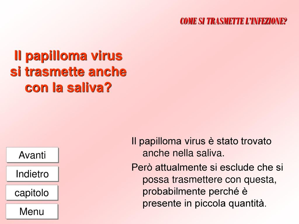 hpv high risk numbers human papilloma virus definition
