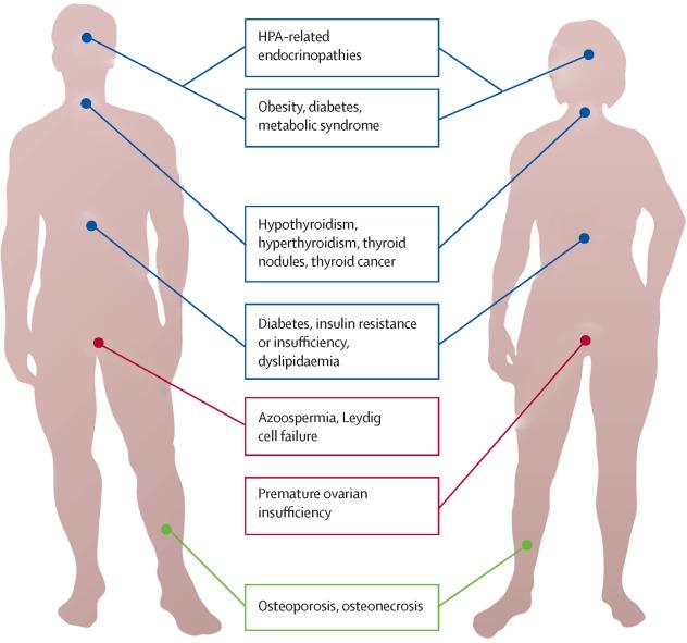 cancer survivor endocrine)