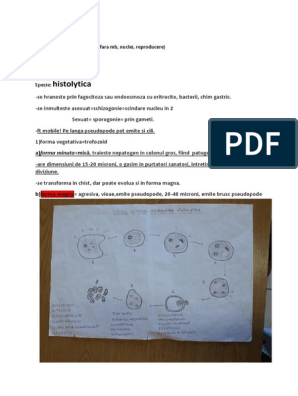oochisti criptosporidici și chisturi de giardie)