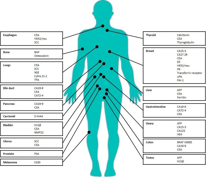 cancer genetic markers