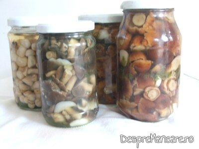 Ciuperci la borcan - GastroWiki