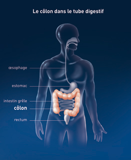 papiloma fibroepitelial escamoso treatment of oxyuris worm