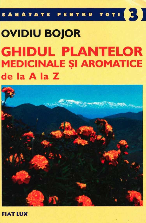 Plant Vanilie europeana (Satureia hortensis ), 5 sem (explvanilie5sem)