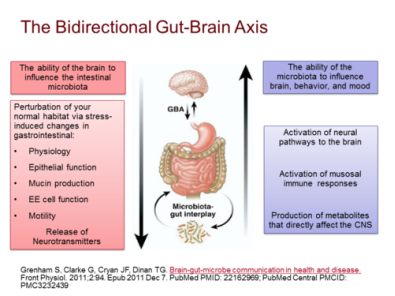 Dysbiosis a review highlighting obesity and inflammatory bowel disease