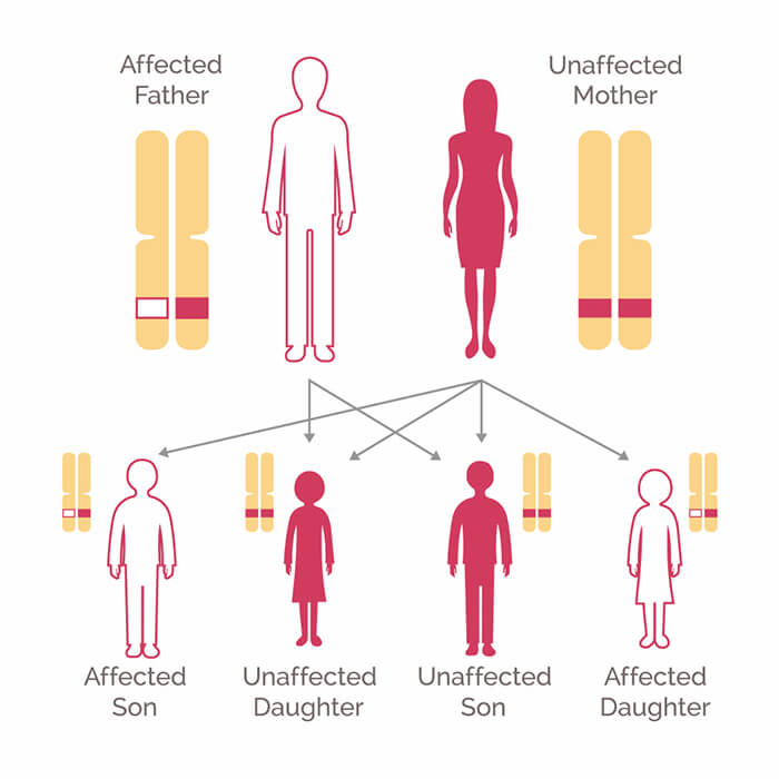 Cancer is genetic but not inherited, Subcategorii
