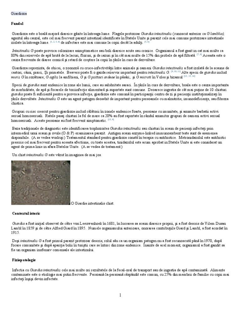 Giardia — un risc pentru sanatatea oamenilor si a animalelor