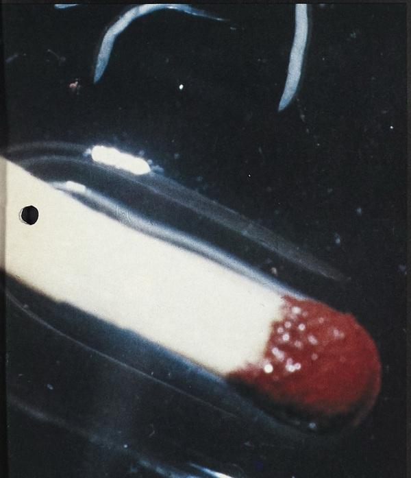 pinworm în apă)