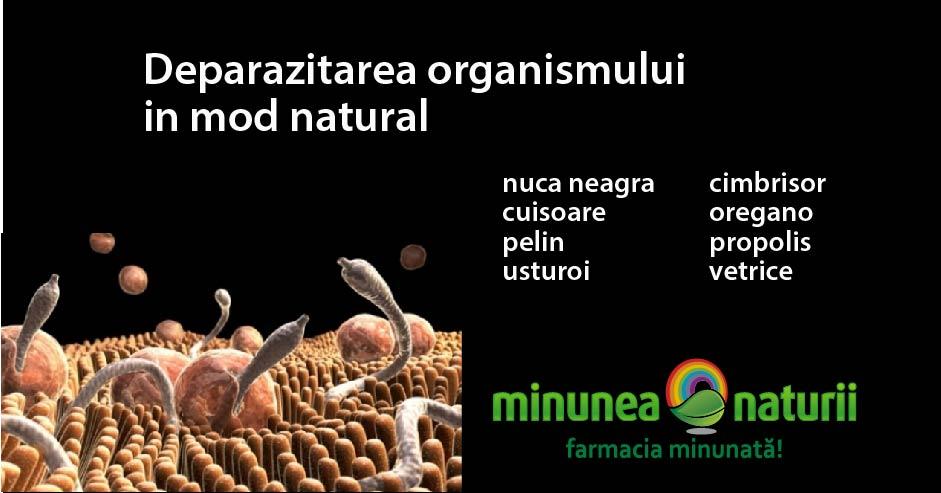 Detoxifiere de paraziti. Ne interesează părerea ta!