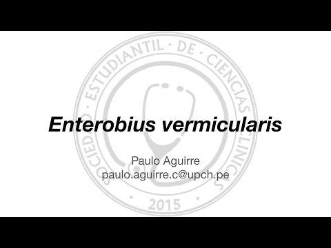 enterobius vermicularis in bisaya)